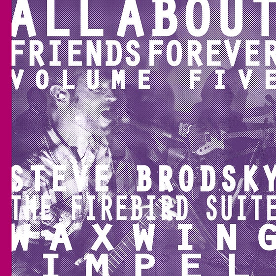 "Image of ALL ABOUT FRIENDS FOREVER VOLUME FIVE 7"" w/zine"