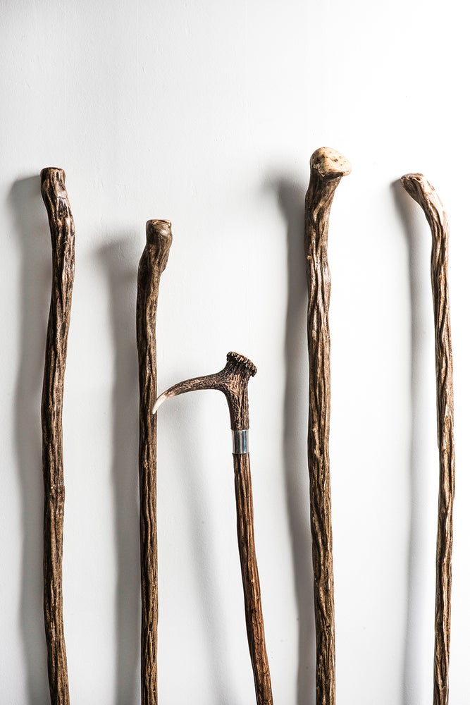 Image of Dog Trial Stick