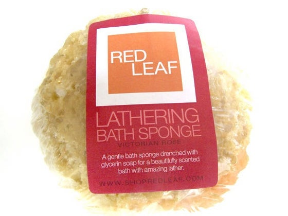Image of Red Leaf Lathering Soap Drenched Shower and Bath Sponge