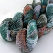 Image of Ponderosa - Merino/Silk Sock Yarn