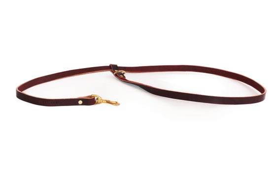 Image of Walk-Run Leash