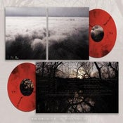 "Image of COLARIS ""renewal"" 2xLP"