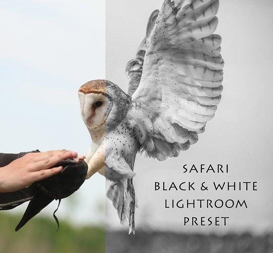"Image of ""Safari Black & White"" Lightroom Preset"