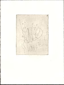 Image of 7 of 7 series - limited edition etching #4