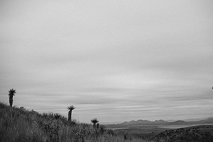 Image of Desert Conversations - Marfa, TX (Davis Mountains)