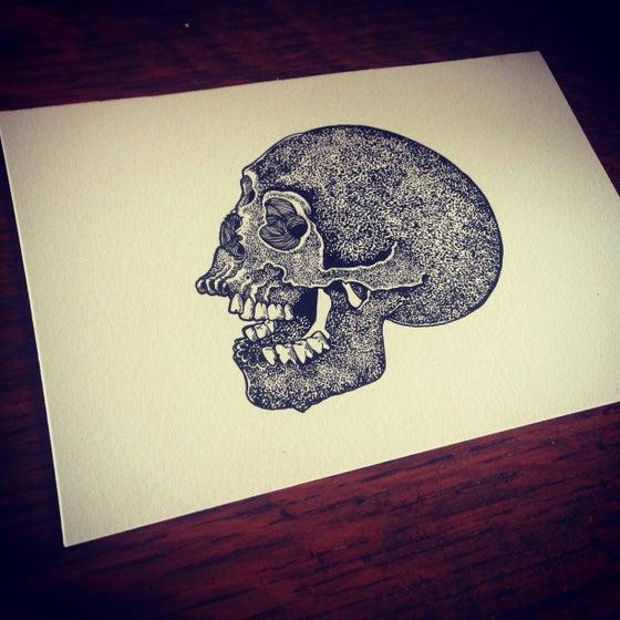 Image of Skull