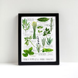French Herbs Watercolor Print by Alyson Thomas of Drywell Art. Available at shop.drywellart.com