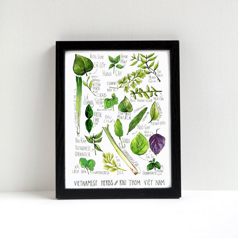 Image of Vietnamese Herbs Watercolor Print