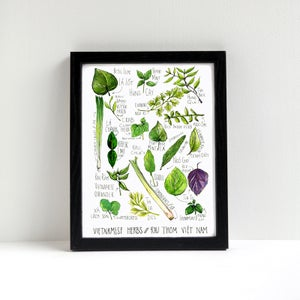Image of Vietnamese Herbs Watercolor Print