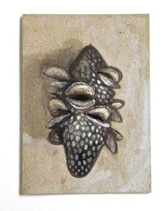 """Image of """"Banksia Pod"""" by Cynthia Thornton"""
