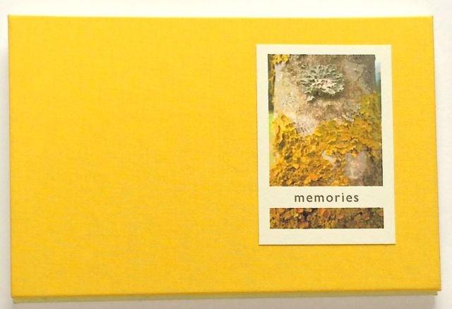 Image of Memories, a concertina fold book.