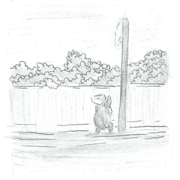 Image of SALE! Badger's Day Out