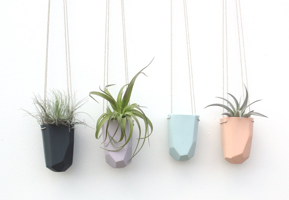 Image of wide hanging crystal planter