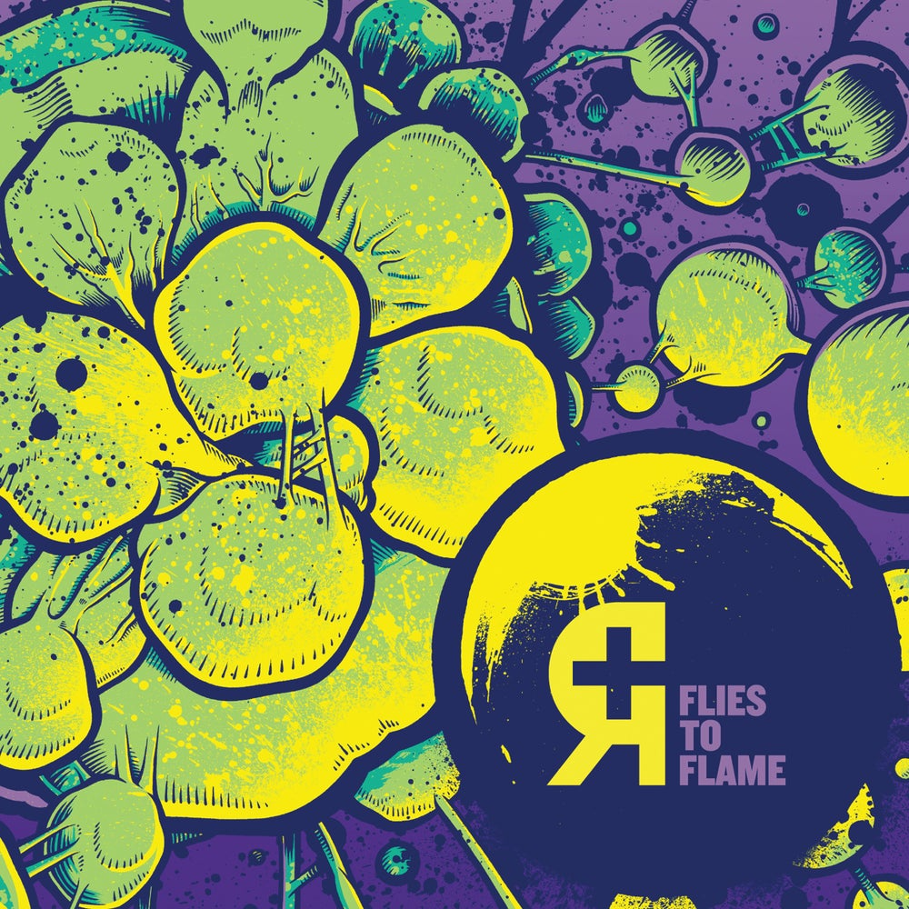 Image of Rosetta - Flies to Flame CD *Preorder