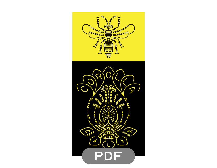 Image of Pollinator Typogram - PDF File