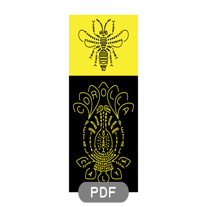 Image of Pollinator Typogram - PDF File Download