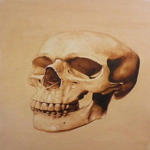 Image of Anatomical Skull ink on illustration board Signed Print