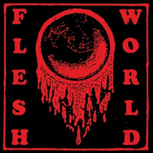 Image of FLESH WORLD - 'Planned Obsolescence' EP
