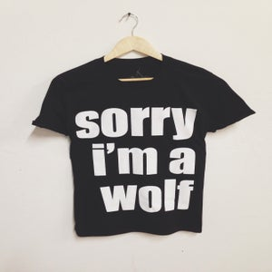 Image of Sorry t