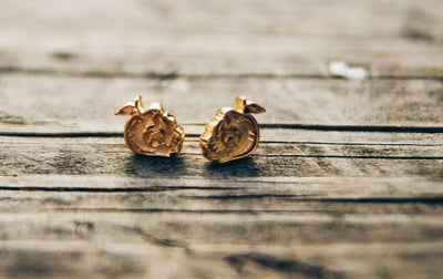 Image of Bad apple earrings