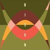 Image of Bison - Travellers CD