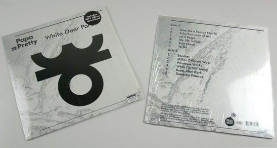 Image of White Deer Park vinyl edition