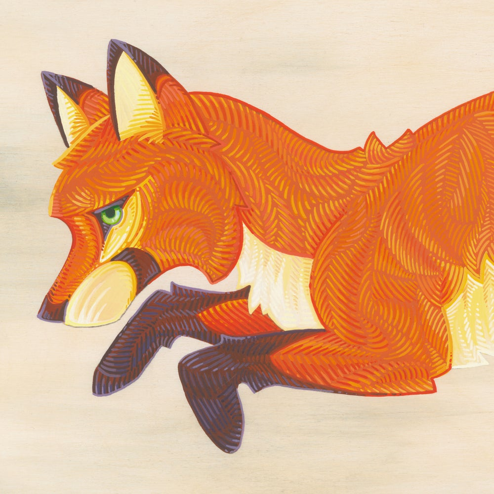 Image of Split Fox - Print