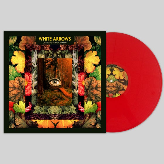 Image of Dry Land Is Not A Myth Vinyl