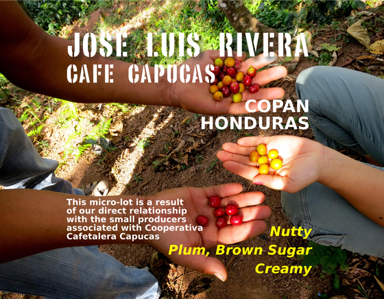 Image of Jose Luis Rivera, Cafe Capucas, Honduras