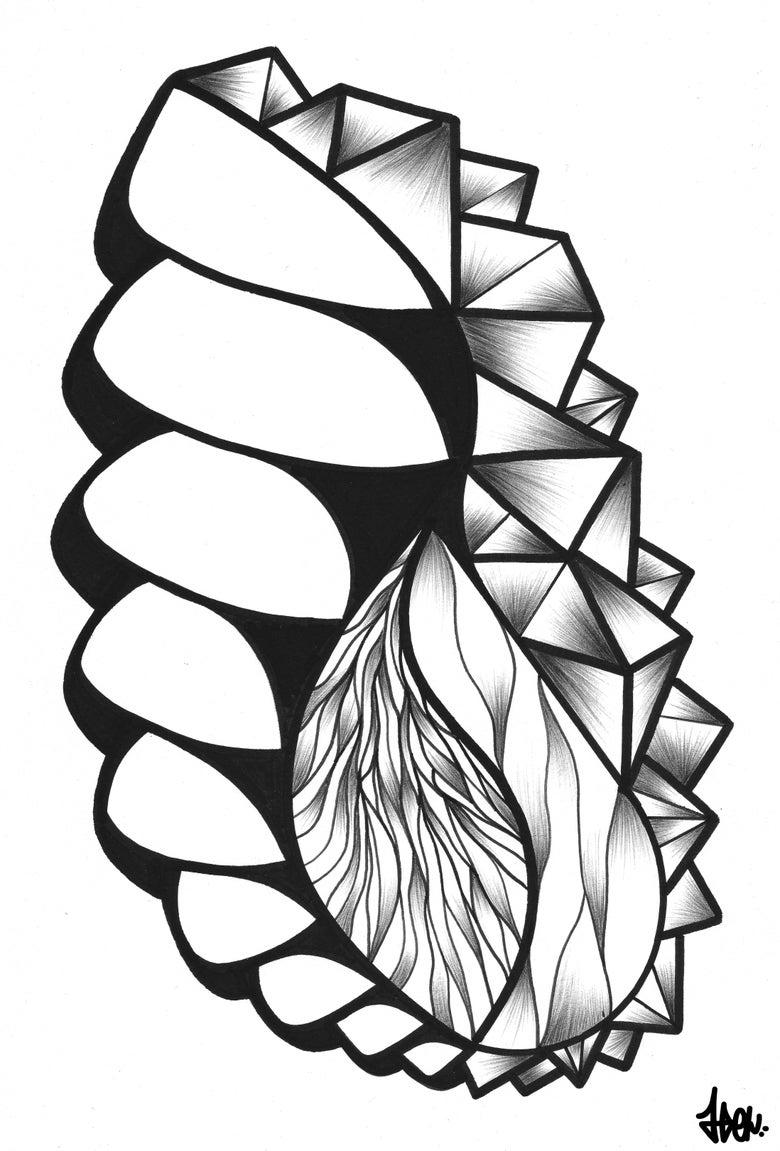 Image of Abometric #1