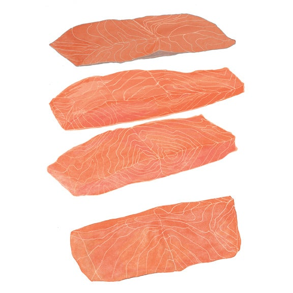 Image of SALMON CUTS food illustration digital print 8x10