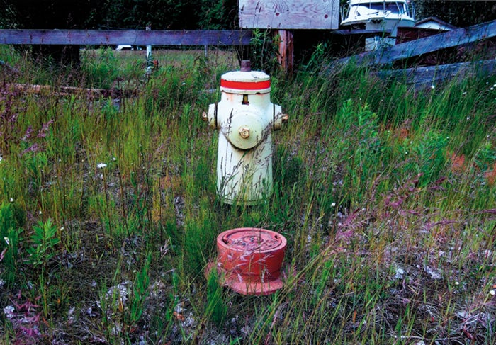 Image of  a close look at fire hydrants