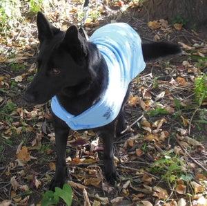 Image of Fleece Dog Coat Size Large pdf Pattern