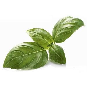 Image of Basil Olive Oil