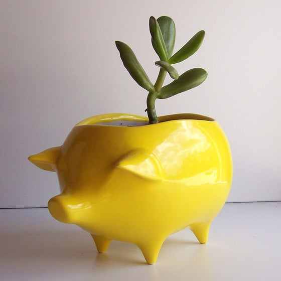 Image of Pig planter in lemon yellow