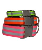 Image of Reflective Dog Collar on UncommonPaws.com