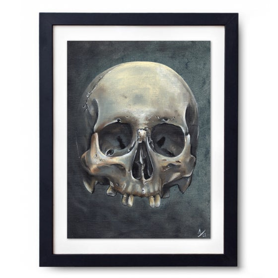 Image of Andy Ultra A3 Skull Print