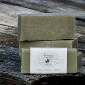 Image of Tea Tree Mint