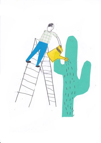 Image of Poster Cactus