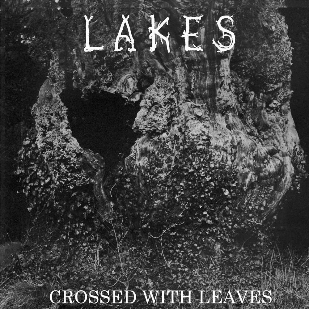 "Image of Lakes ""Crossed With Leaves"" 7"""