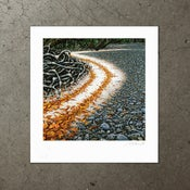Image of Calophyllum Tide - Art Print