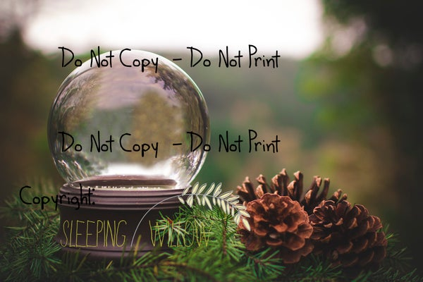 Image of The Sleeping Willow 2014 Christmas Snowglobe Digital Template