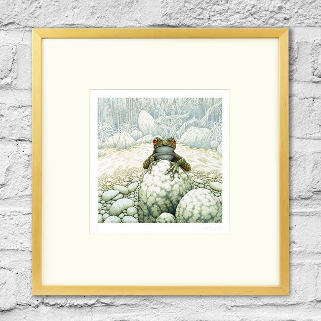 Image of Green-Eeyed Tree Frog - Framed Print