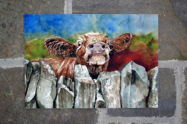 Image of 'Nosey Coo' Limited Edition Print
