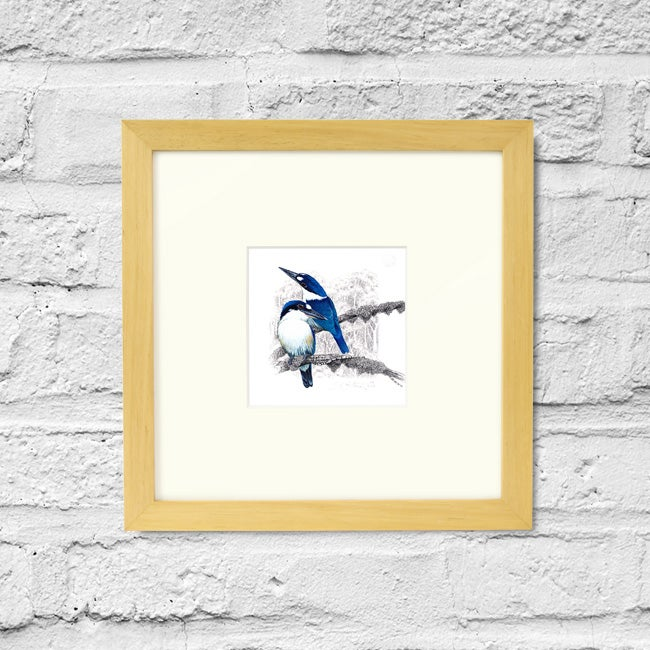 Image of Forest Kingfisher - Framed Print