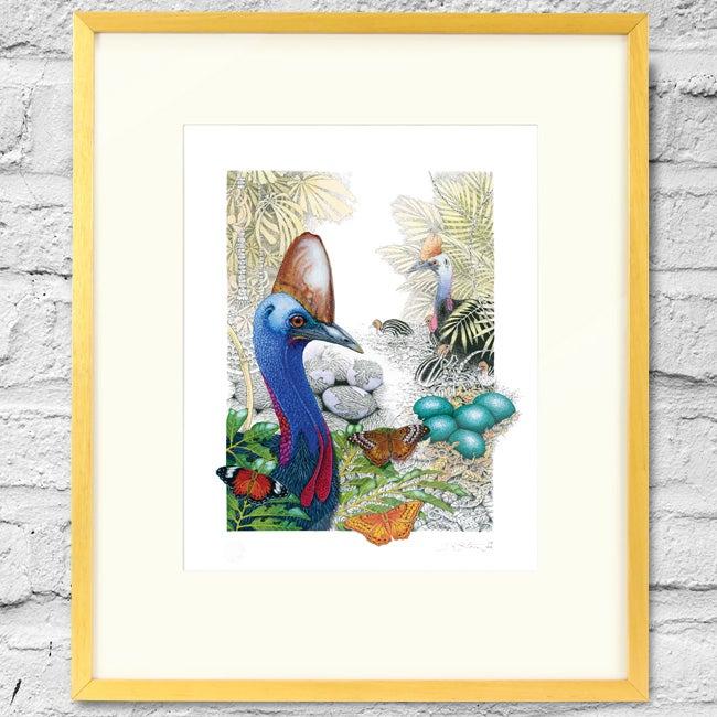 Image of Australian Cassowary - Framed Print