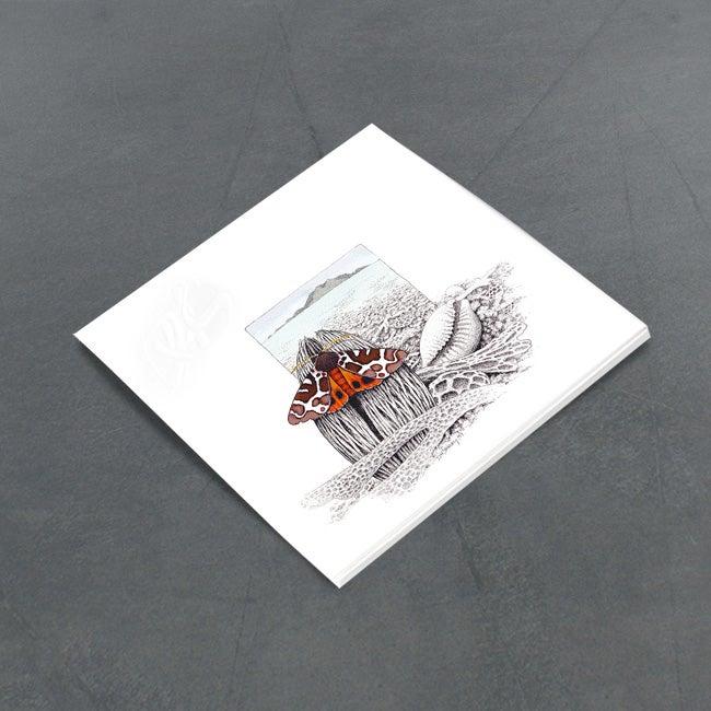 Image of Tiger Moth and Coast Line - Miniature