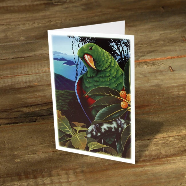 Image of Male Electus Parrot - Gift Card