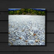Image of Coral Beach - Canvas Print