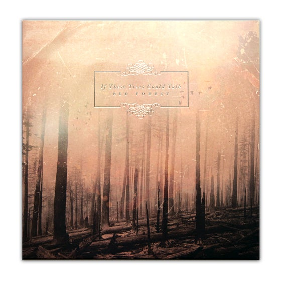 """Image of 12"""" If These Trees Could Talk - Red Forest"""